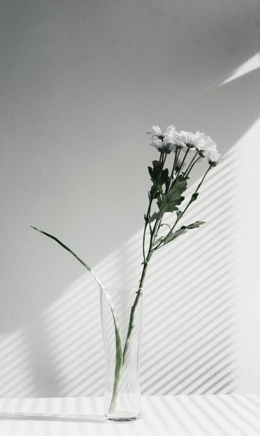 wat is minimalisme